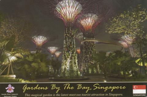 A magical looking park by the bay in Singapore. Artificial trees with purple branches and lamps in the top.